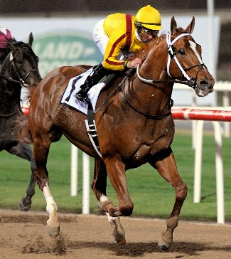 Kuda Balap Paling Menguntungkan dalam Sejarah